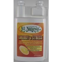Energy & Stress